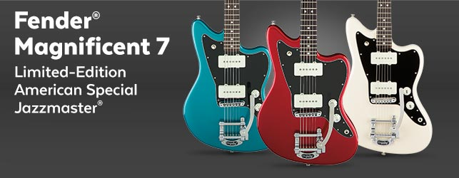 Fender Offset Models